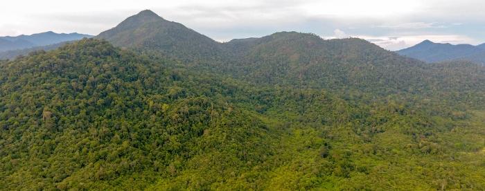 The village forest permit: Challenges and conditions for social forestry in Indonesia