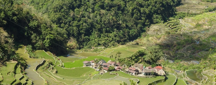 Community forest rights in the Philippines and Nigeria: Strong legal foundation is not enough