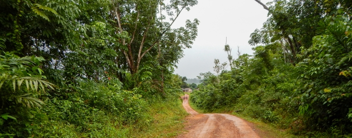 Do forest rights empower communities in Liberia? In conversation with Jonathan Yiah